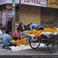 India trip_054