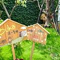 buka這一隻熊 (2).jpg