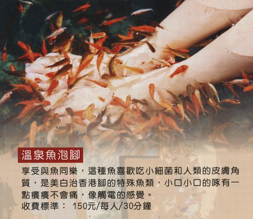 烏來‧雲之湯─溫泉魚.png