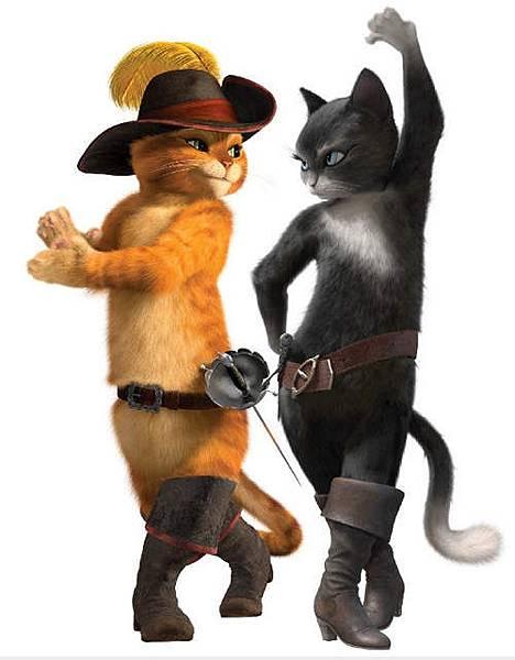 鞋貓 & Kitty