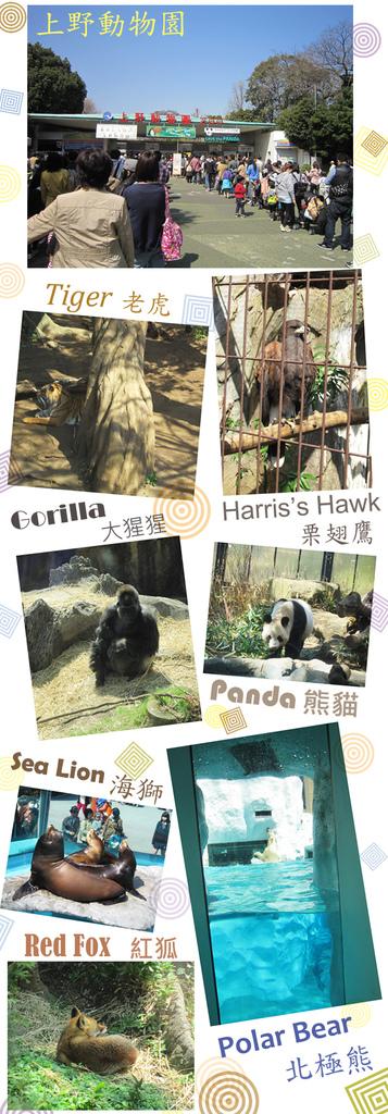 2013.3.22 上野動物園