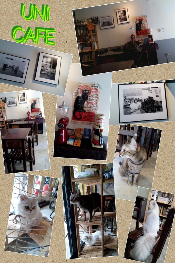 2015.08.01 Uni Cafe with M