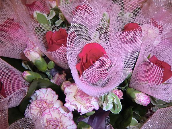 送你們一束鮮花聊表祝賀之意