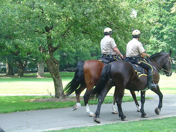 騎著駿馬的騎警