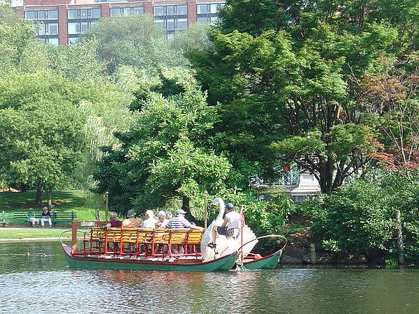 腳踏的天鵝船