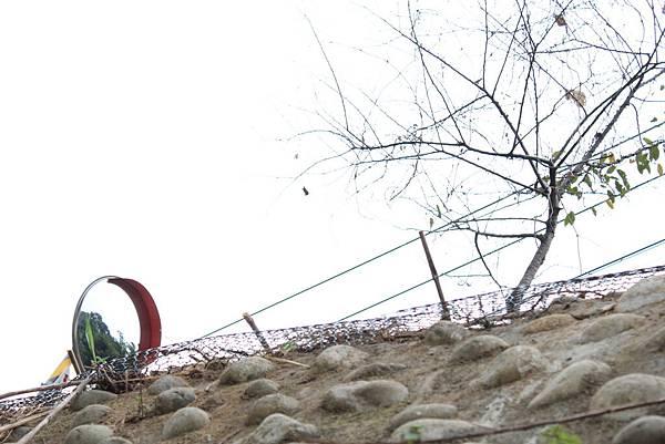 20111010-54 安妮公主花園.JPG