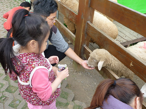 20101205-083 清境農場.JPG