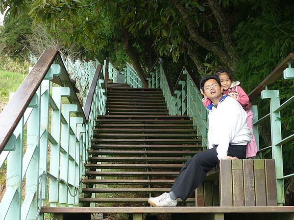 20101205-047 清境步步高升.JPG