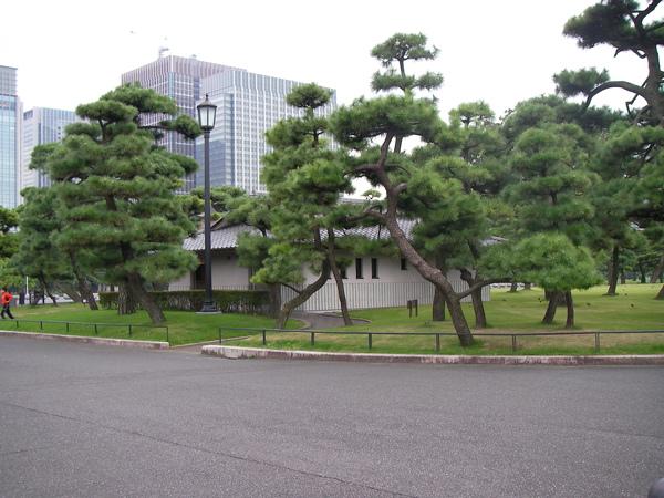 D5 東京 12 皇居外苑公廁.JPG