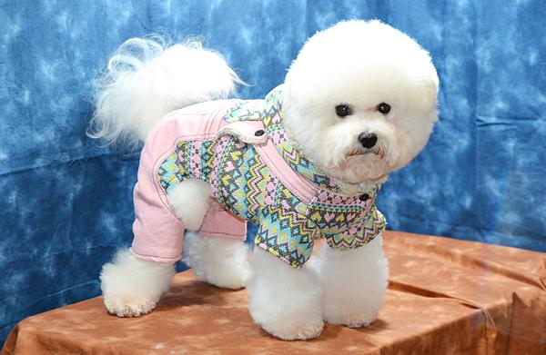商品編號:81040503-民族風粉紅+藍連身裝