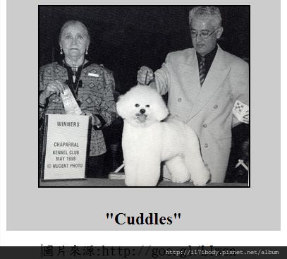 CUDDLES CH
