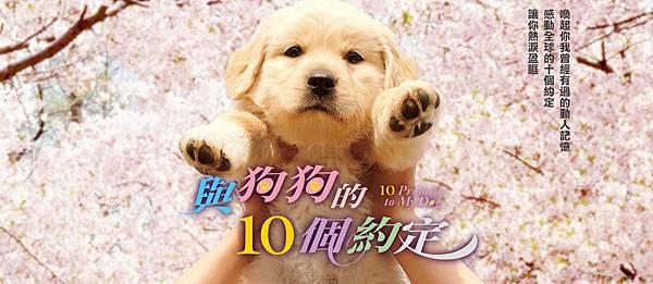與狗狗的10個約定