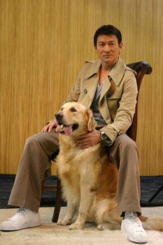 劉德華與黃金獵犬