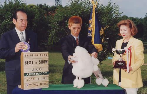 2000 All Breed NO.3 & Pedigree Award in Japan