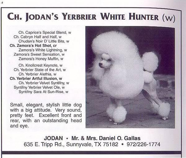 Jodan's Yerbrier White Hunter