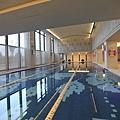 遠雄的二代宅,公共空間,大空間游泳池大面積採光讓游泳同時也可以享受陽光-中和左岸/中和建案-玫瑰園