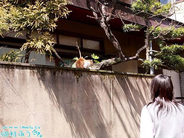 r3_nakamura_m01_040