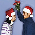 ask-mb-mistletoe