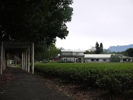 20111126_0074.JPG