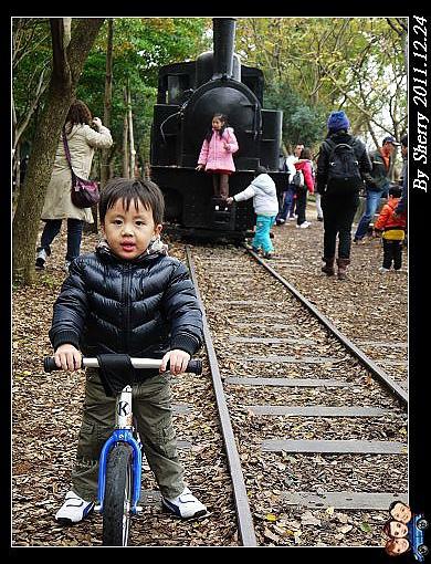 鍇堅持不騎在鐵軌上,一直驚恐地回頭看著那輛火車說:「火車嘟嘟會開過來捏!」