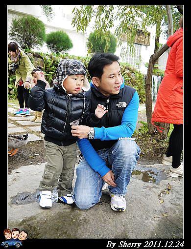 20111224_003水岸林林015.jpg
