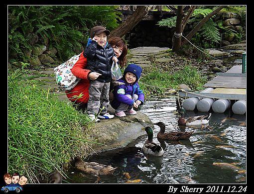 20111224_003水岸林林094.jpg