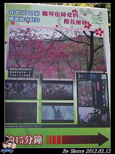 20120212_桃源仙谷053.jpg