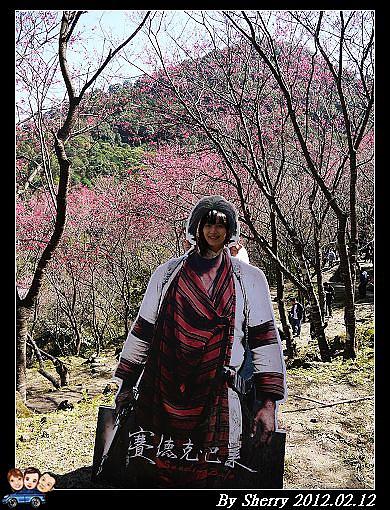 20120212_桃源仙谷054.jpg