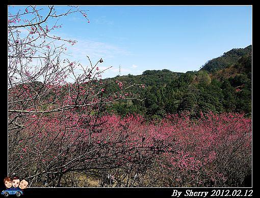 20120212_桃源仙谷061.jpg