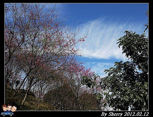 20120212_桃源仙谷064.jpg