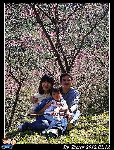20120212_桃源仙谷072.jpg