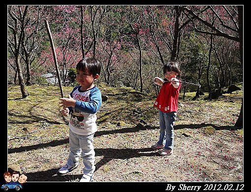 20120212_桃源仙谷078.jpg