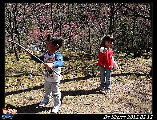 20120212_桃源仙谷080.jpg