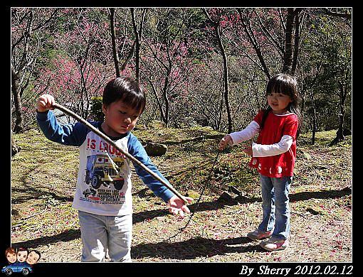 20120212_桃源仙谷083.jpg