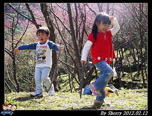 20120212_桃源仙谷084.jpg