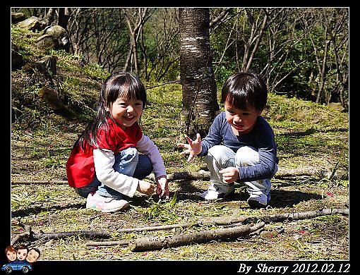 20120212_桃源仙谷089.jpg