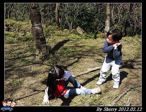 20120212_桃源仙谷095.jpg