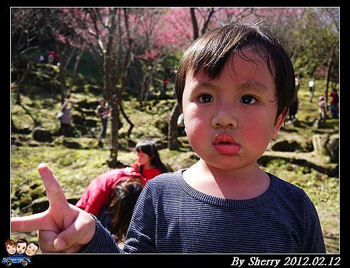 20120212_桃源仙谷098.jpg