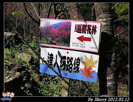 20120212_桃源仙谷099.jpg
