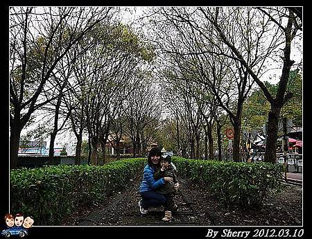20120310_001_東豐自行車隧道12
