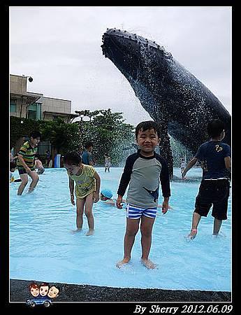 20120609_002海生館0041