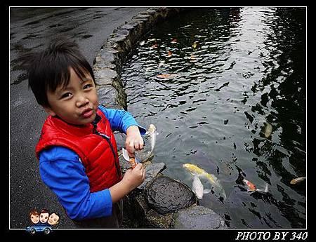20121201_日月潭小木屋0031