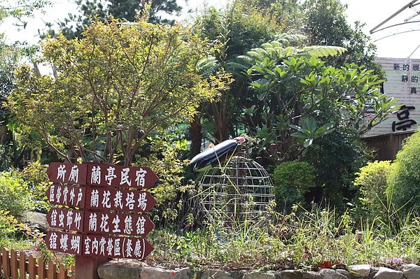 20101106_00_0038.JPG