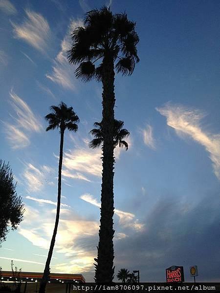 2012.10.LA TRIP 1294