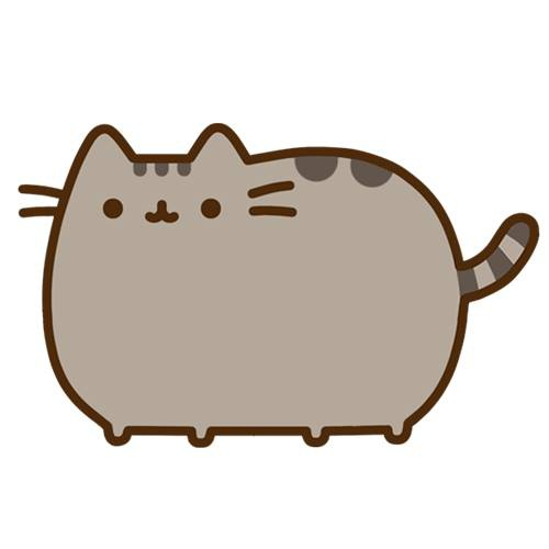 pusheen cat (from official page on Facebook)