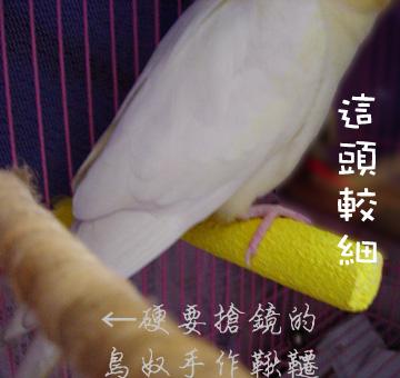 polly's超輕感美趾棲木 (3).jpg