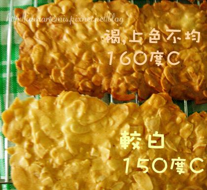 20100409杏仁瓦片03.jpg