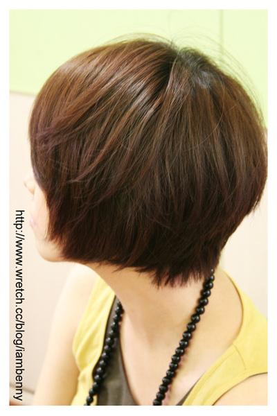 尚洋benny2009-2010流行髮型髮色 短中髮19