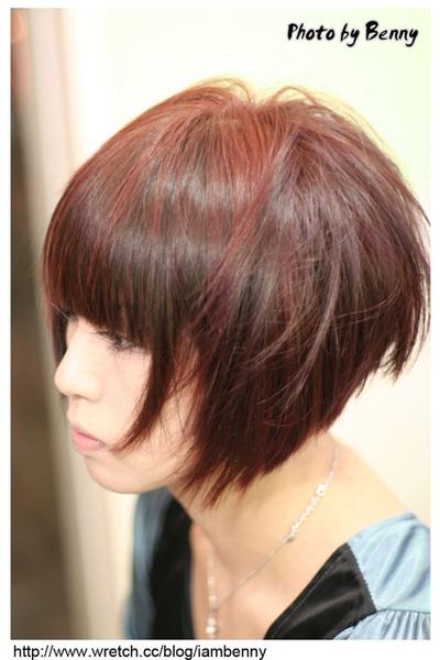 尚洋benny2009-2010流行髮型髮色 短中髮48