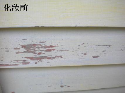 20091231-hardwork1.JPG